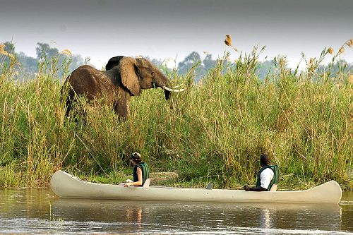 Zambia Safari Adventure - Baines River Camp