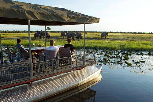 Bucket List Botswana Safari: Chobe and Okavango Delta - Elephant Sighting on Chobe River Safari