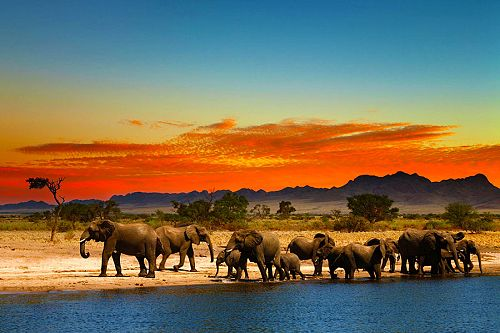 Africa All Inclusive Safari Packages