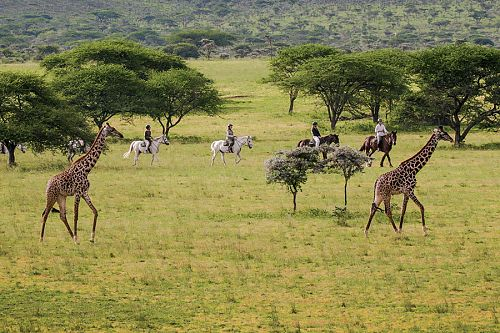 Luxury Kenya Vacation Packages - Horseback Riding Safari at Ol Donyo Lodge