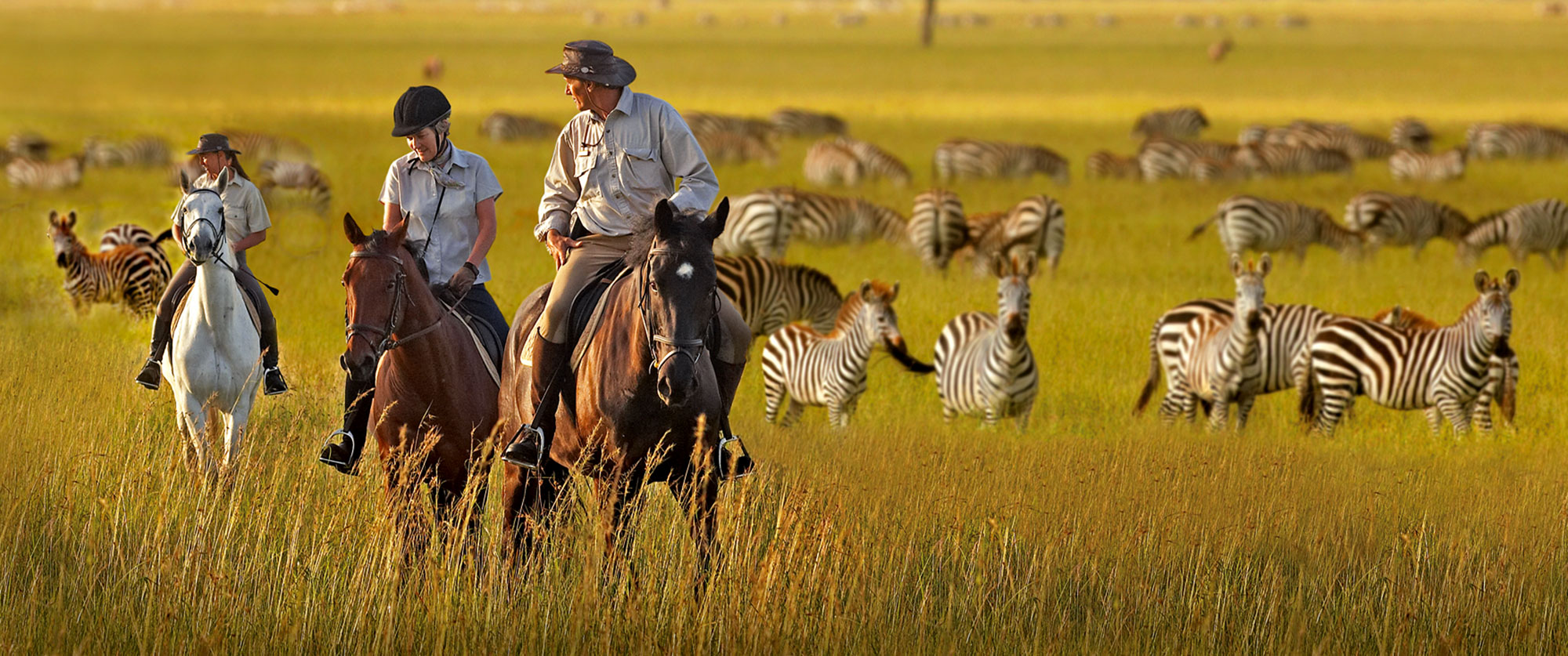best safari travel expert - horse safari - game drive