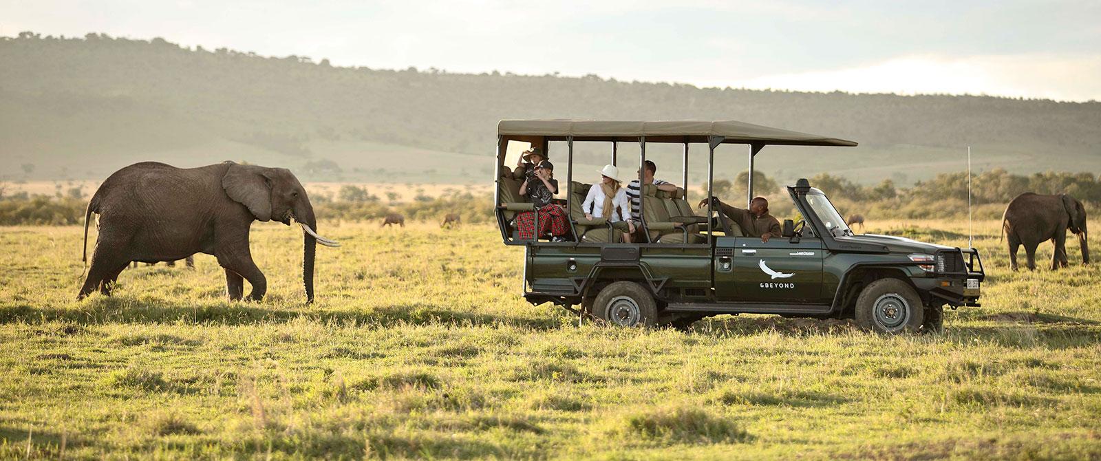 Elephant Seen on Safari in the Masai Mara Kenya