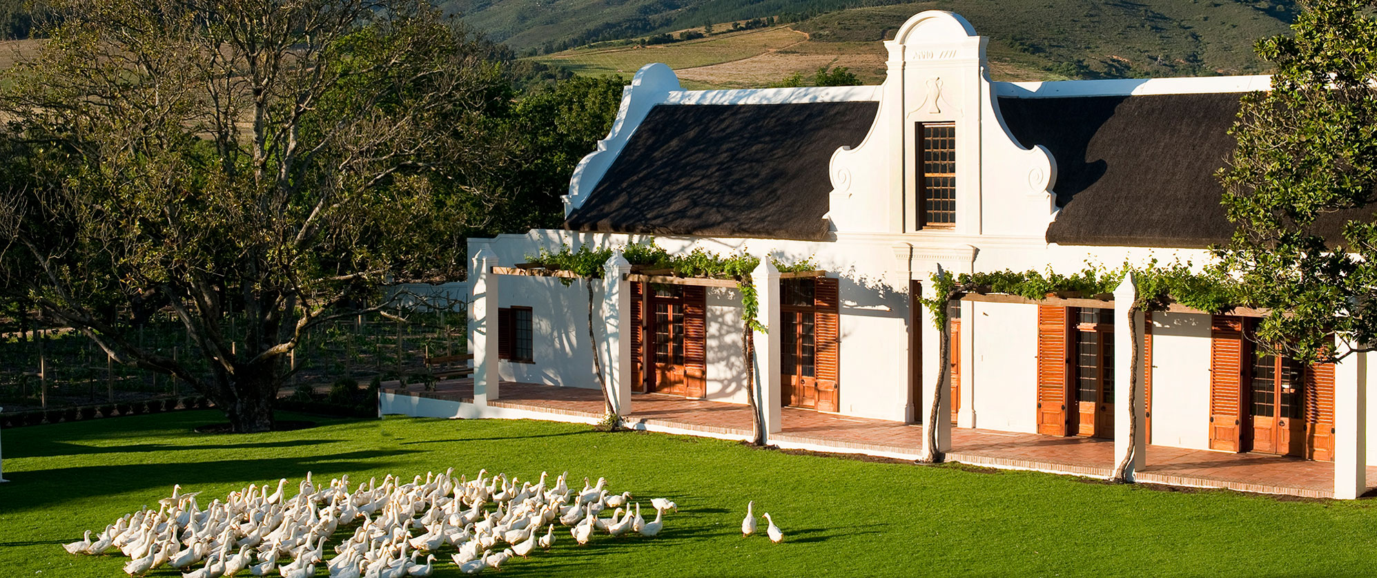 South Africa Gourmet Culinary Tour - South Africa - Western Cape