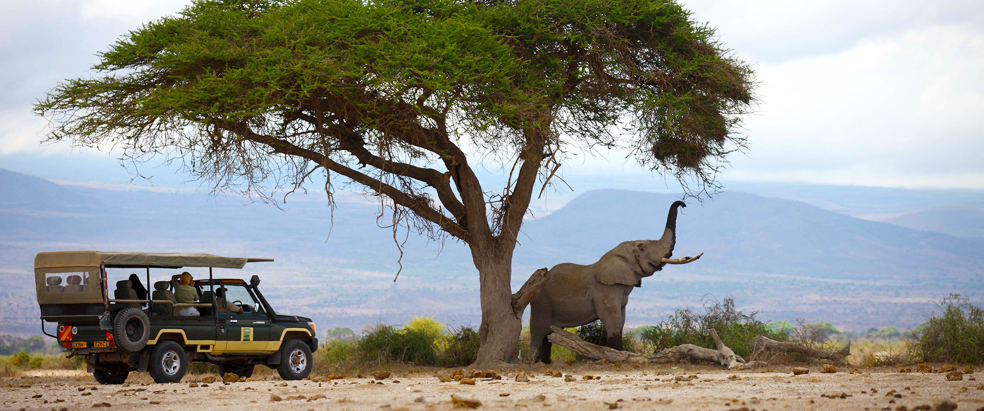 Kenya and Seychelles Package - Tortilis Camp Safari