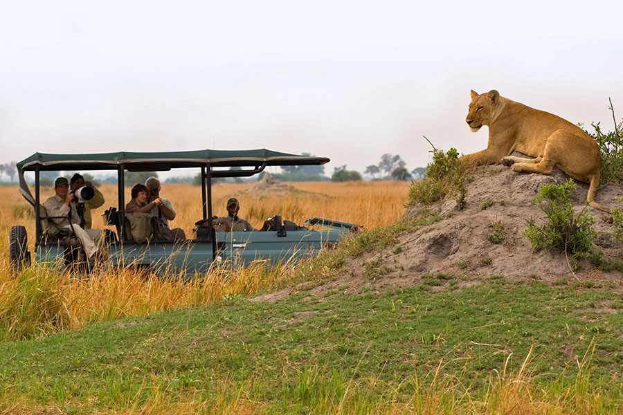 Botswana - Africa - Travel Specialist - Africa Travel - handcrafted