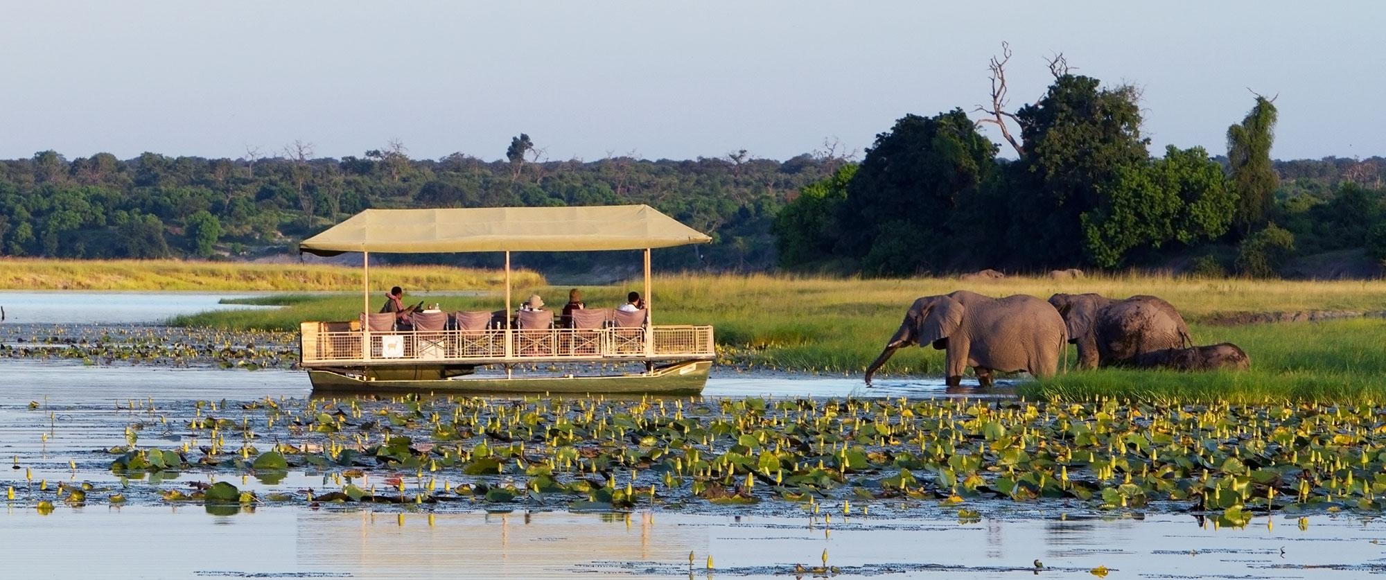 Luxury Botswana Safari - Chobe Game Lodge