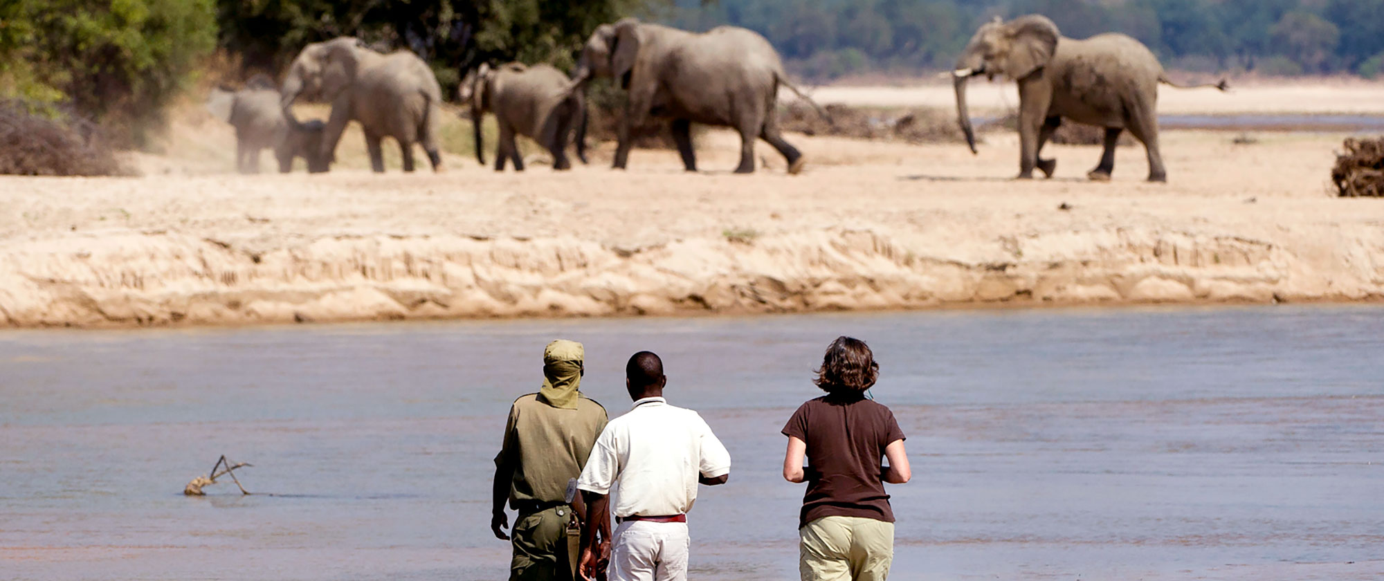 Remote Safari Tour: Zambia Adventure