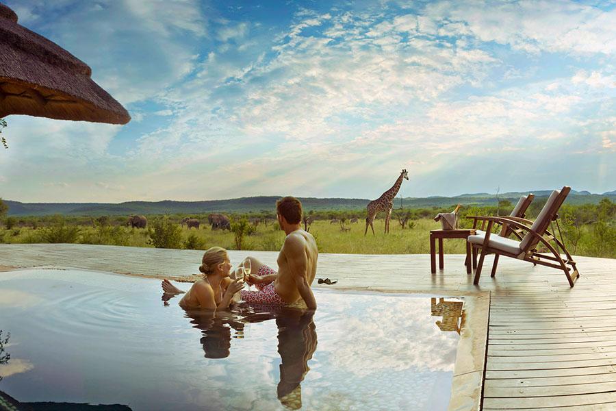 Trip to Africa - Cape Town and Luxury Safari Honeymoon