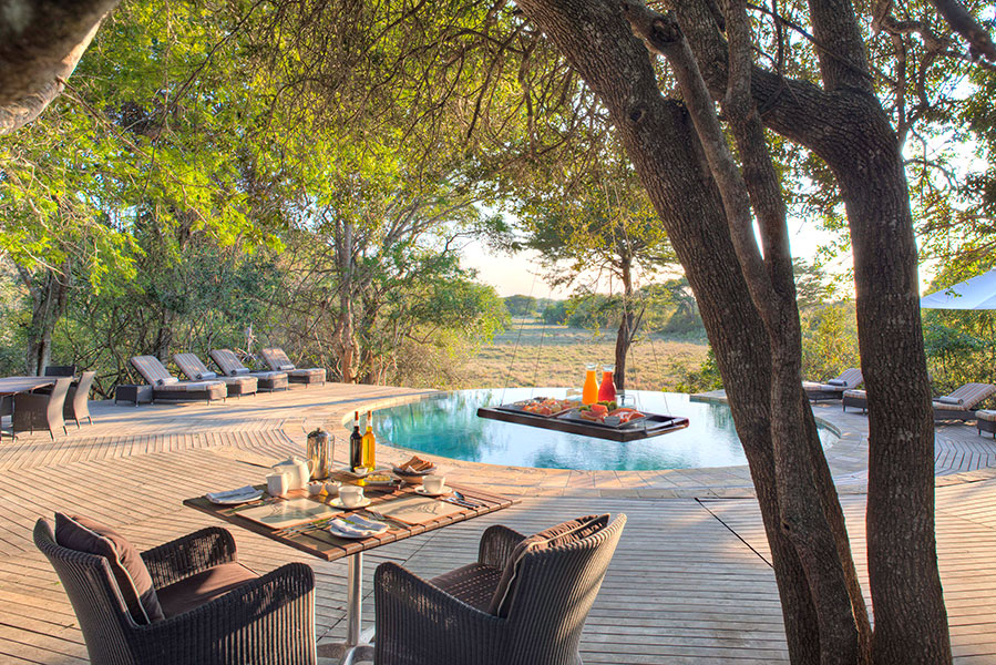 Africa Vacation Packages - Phinda Forest Lodge