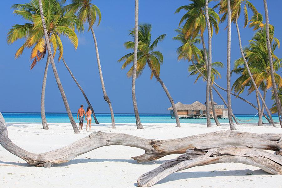 Maldives Low Season Getaway: Gili Lankanfushi