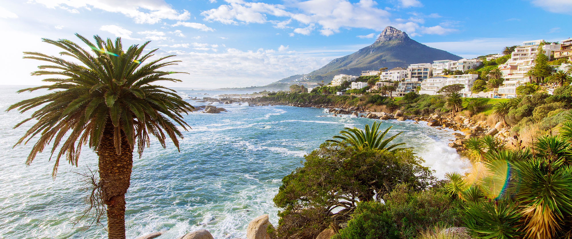 South Africa: Luxury Safari and Cape Town Package - Private Luxury Touring in Cape Town