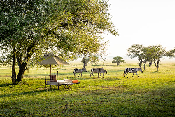 Best Safari Lodges in Africa - Singita Sabora Tanzania