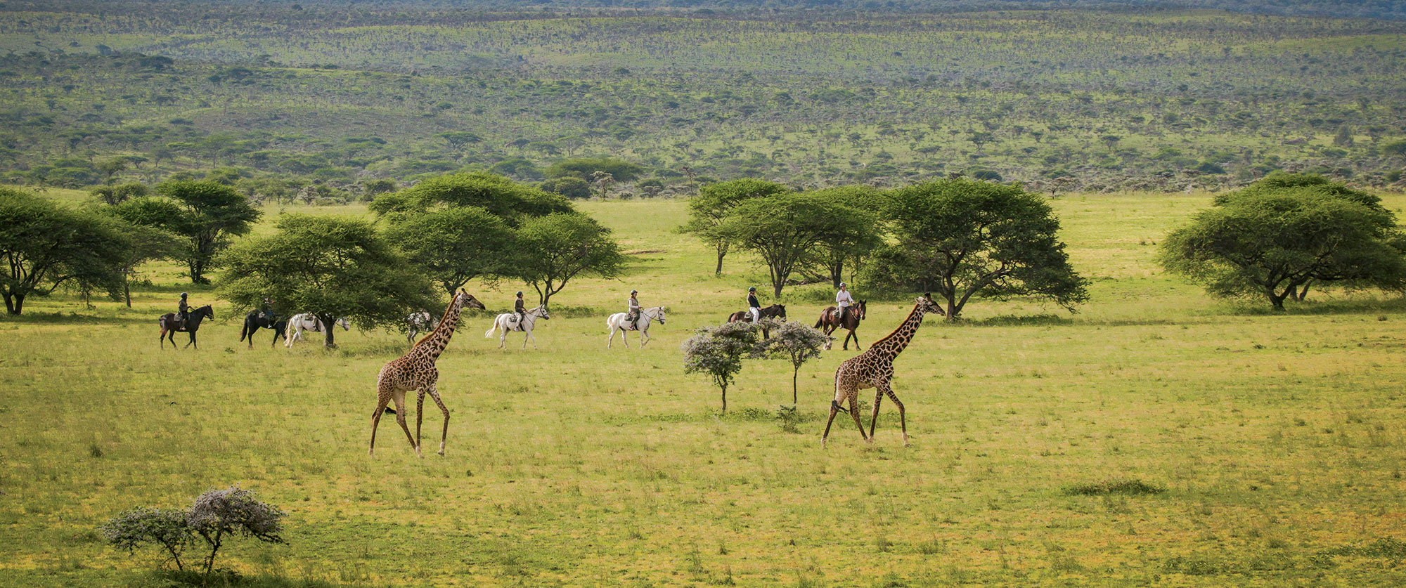 Classic Kenya Luxury Safari Package - Big 5 Wildlife Safari in Kenya