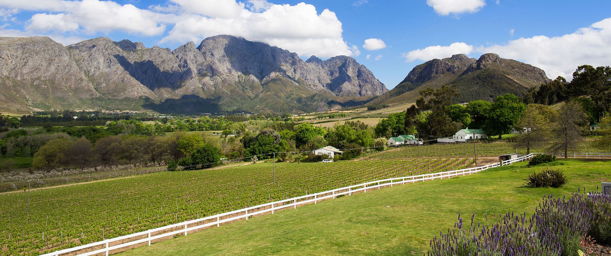 South Africa Safari and Wine Vacation - Mont Rochelle Cape Winelands