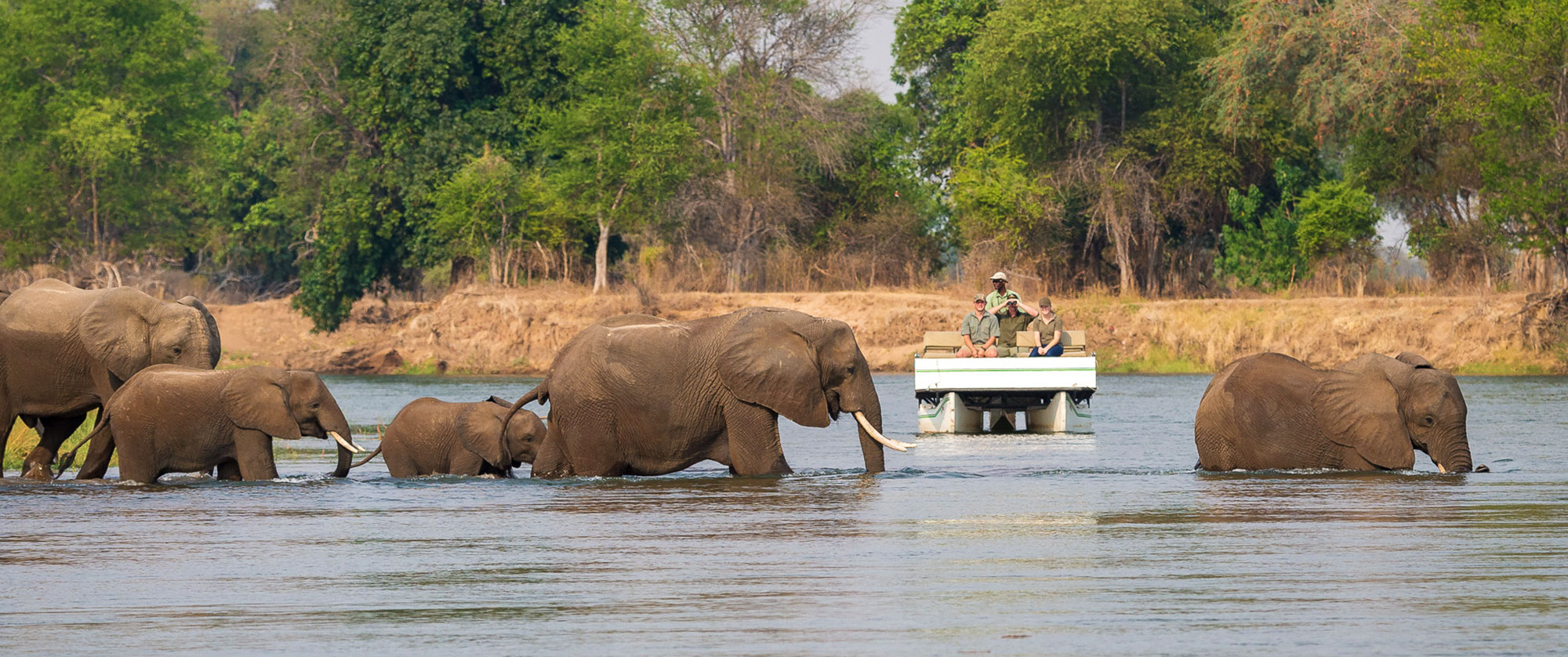 Classic Zimbabwe Safari Package - Little Ruckomechi Camp, Mana Pools National Park, Zambezi River Wildlife Cruise