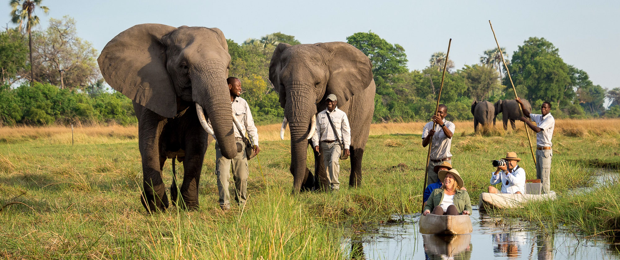 Okavango Delta Packages - Luxury Safari - Mokoro Safari and Walking with Elephants at Abu Camp