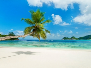 African Beach Vacations - Tropical Beach on Male Island, Seychelles