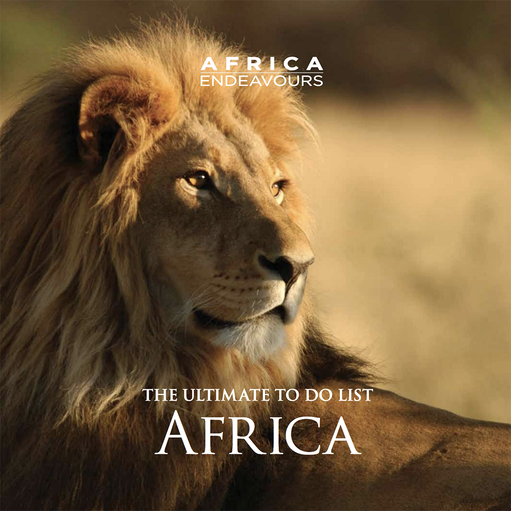 Download Our Africa Travel Brochure - African Safari Travel, Luxury Travel Agency, 5-Star Africa Travel
