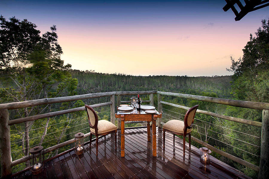 Garden Route South Africa - Tsala Treetop Lodge