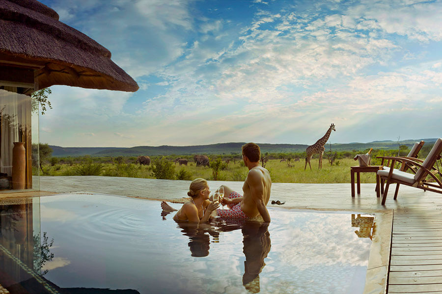 South Africa safari - Madikwe Hills Safari Lodge