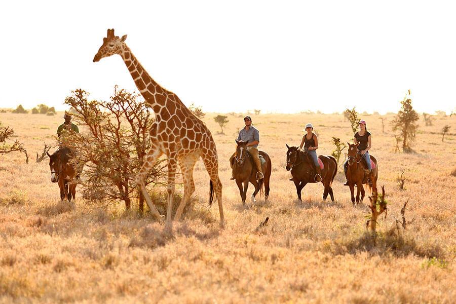 Kenya Laikipia safari - Horseback safari at Lewa Wilderness