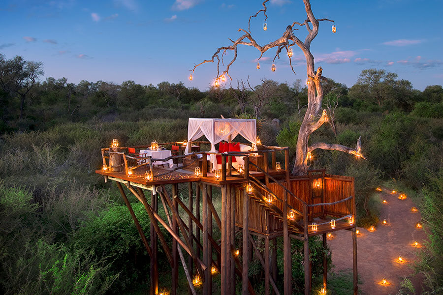 Kruger safari South Africa - Treehouse sleepout at Lion Sands