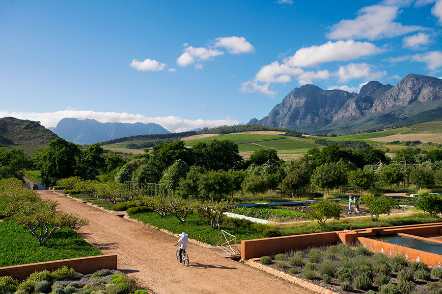 Cape Winelands South Africa - Babylonstoren Farm Hotel gardens