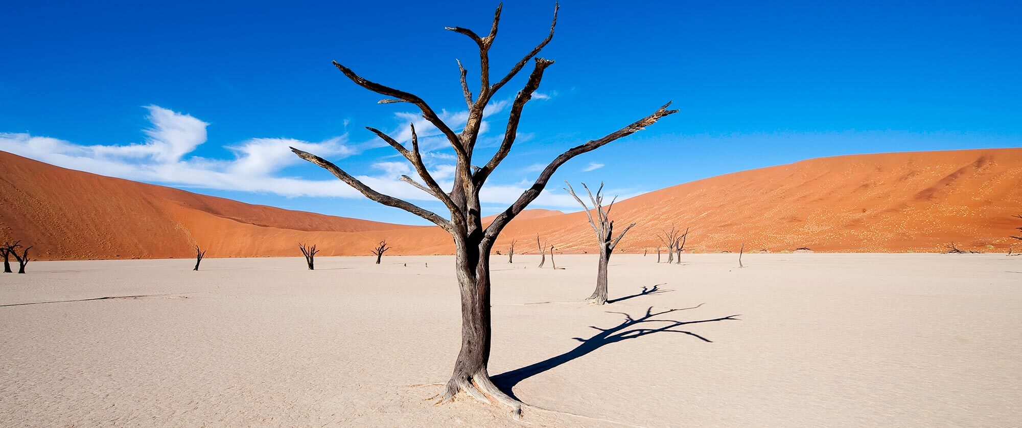 Deadvlei and Sossusvlei - Namibia Highlights Vacation
