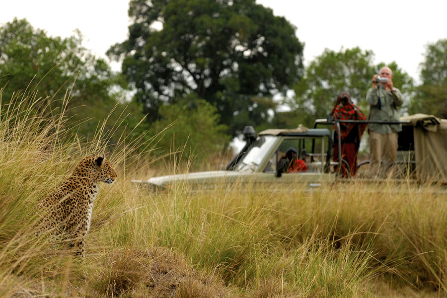 Masai Mara Game Drive - Leopard - Alex Walker's Serian Kenya - Masai Mara Safari Packages