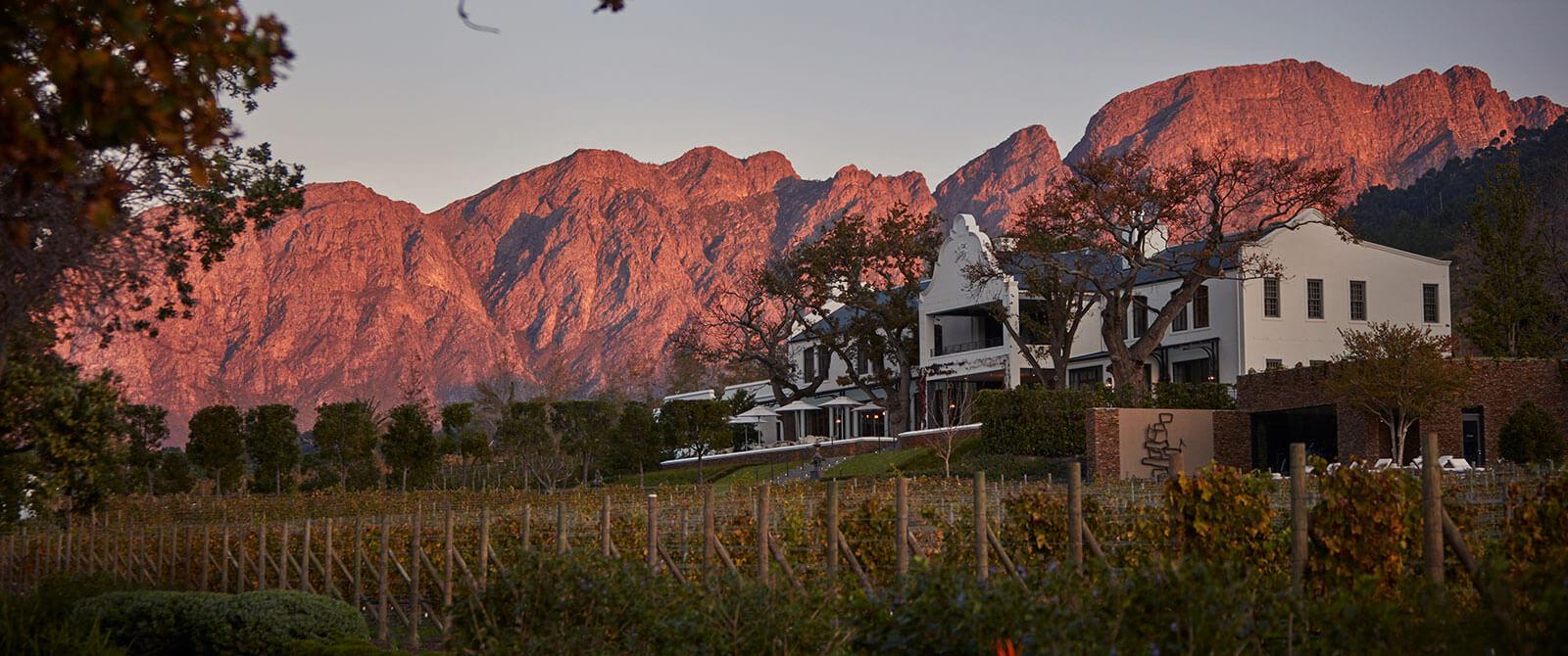 Leeu Estates Franschhoek - Cape Winelands - South Africa Travel Packages