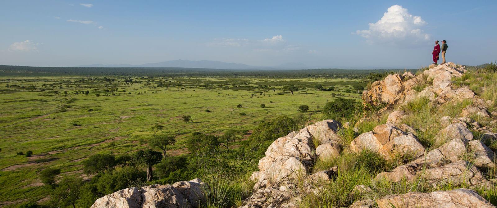 Views of the Wilderness - Tarangire Treetops Lodge - Tanzania Safari Honeymoon