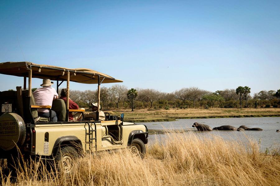 Hippos on safari - Katavi Tanzania - Chada Katavi