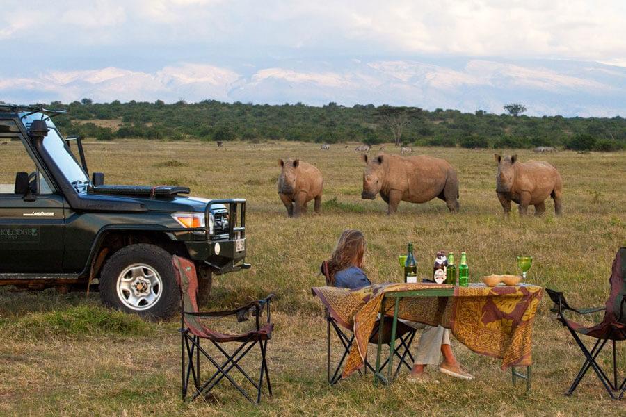 Rhinos on Kenyan Game Drive - Lakipia Kenya - Solio Lodge