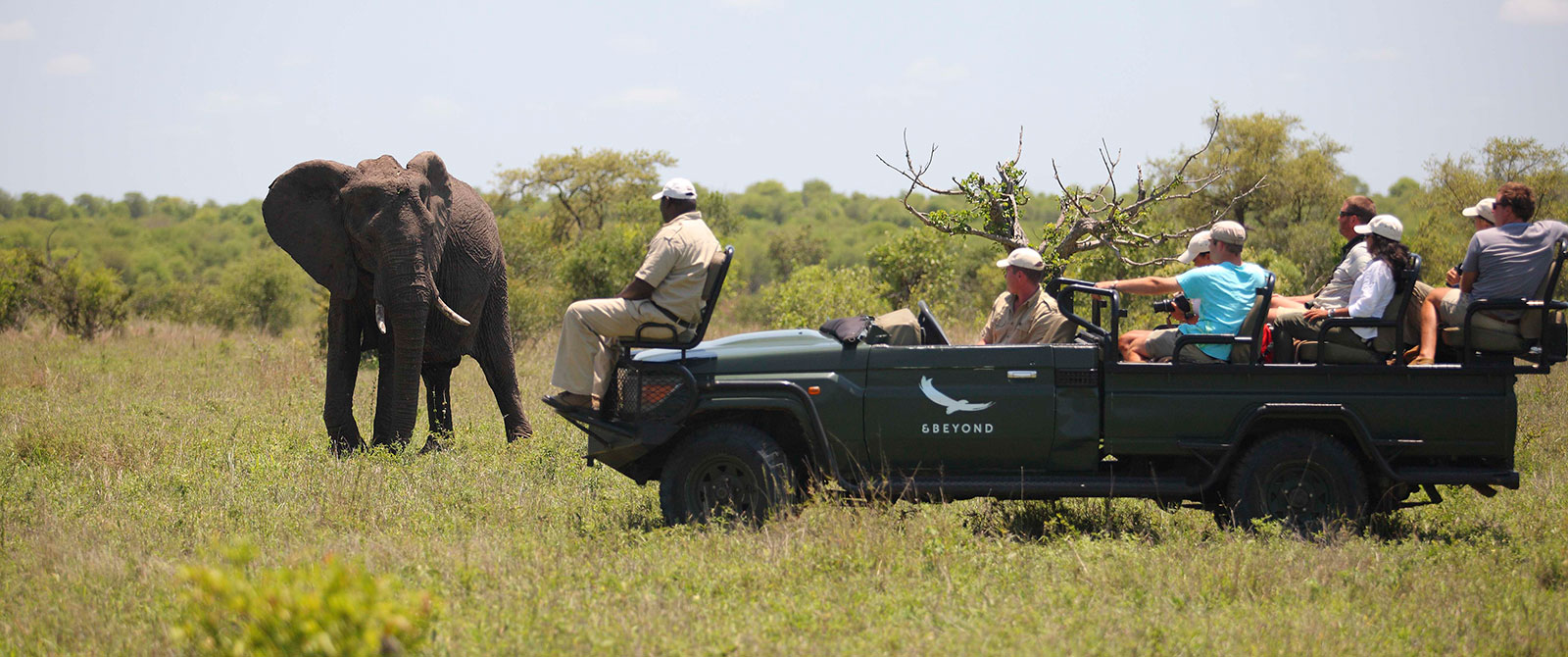 Big 5 Wildlife Safari - Luxury South African Safari: andBeyond Phinda and Sabi Sands