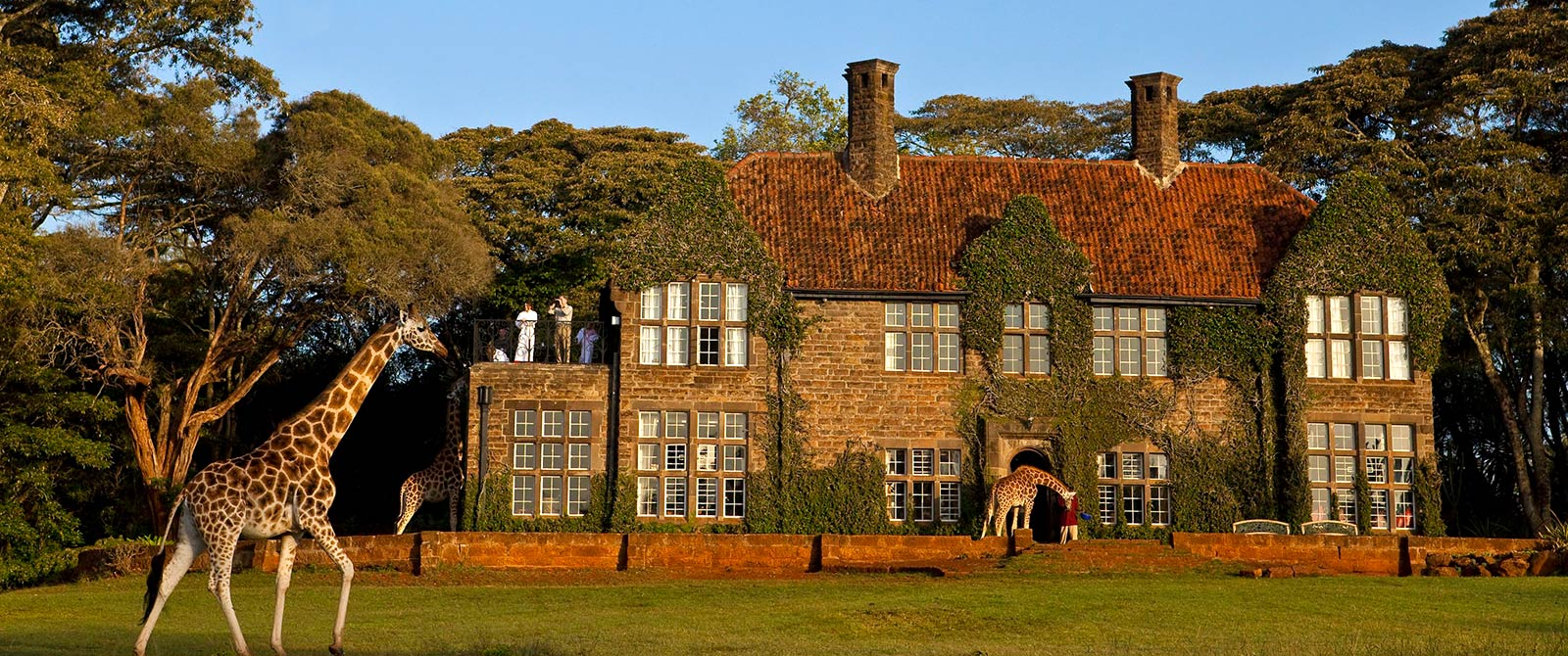 Romantic Kenya: Giraffe Manor and Masai Mara Safari