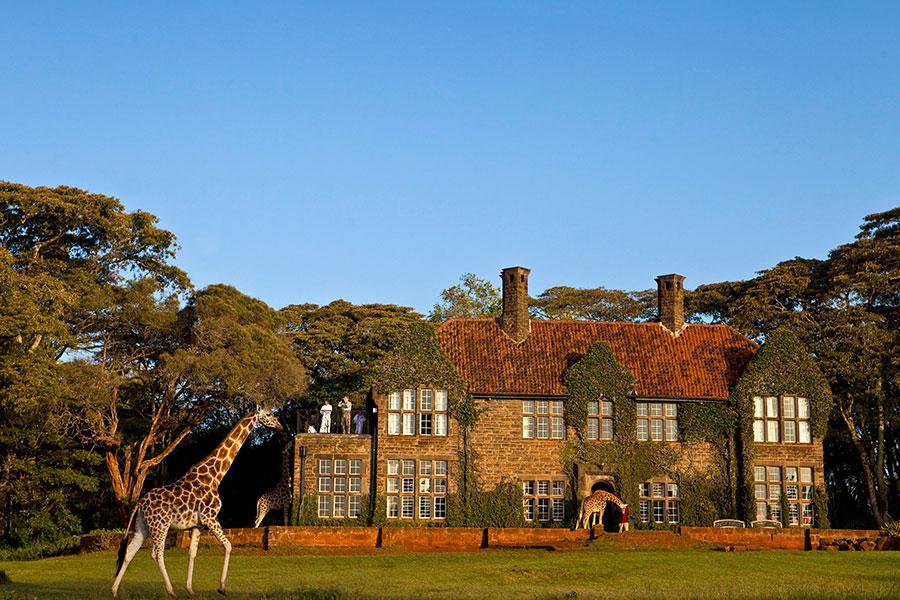 Romantic Kenya: Giraffe Manor and Masai Mara Safari