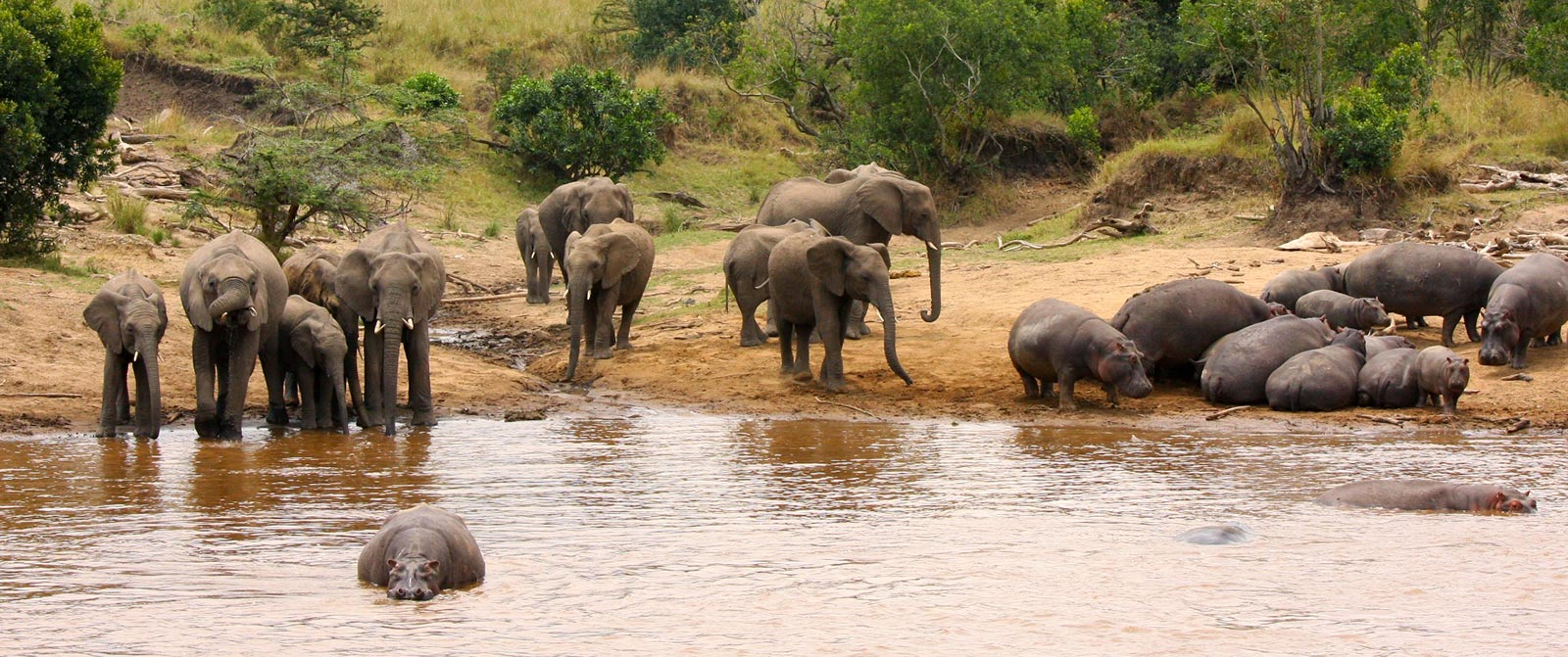 View of Wildlife from Karen Blixen Camp - Masai Mara National Reserve Kenya - Luxury Air Safari: Kenya Adventure Package