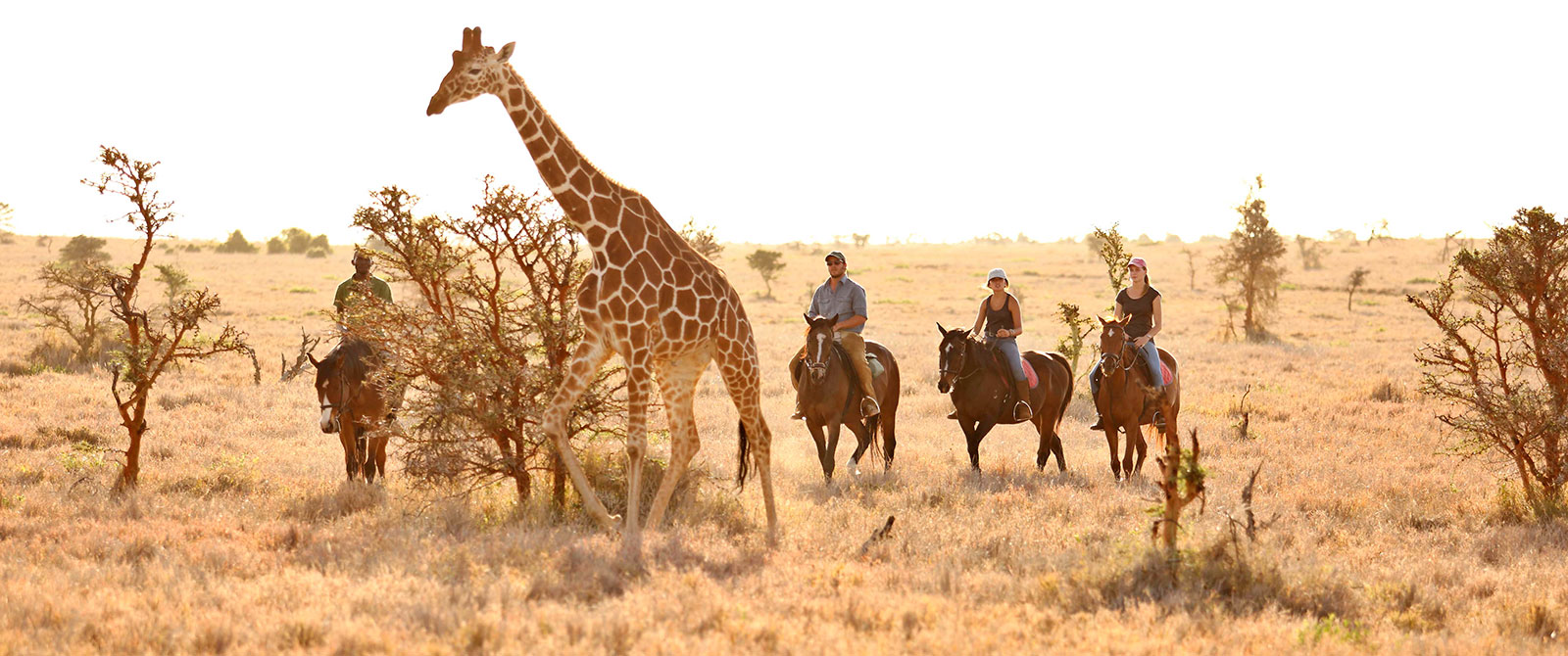 Horseback Safari in Kenya - Lewa Wilderness - East African Safari: Kenya and Tanzania Luxury Tour