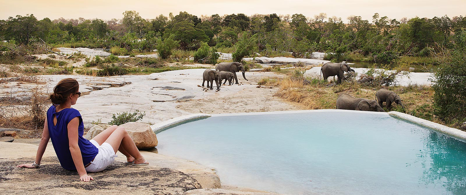 Elephants at the Pool, Londolozi Private Granite Suites, Sabi Sand - Cape Town Explorer and Family Safari Adventure